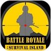 混战:生存岛