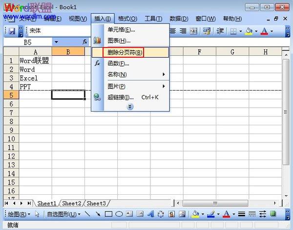 在Excel2003表格中单元格下的分页符如何删除截图