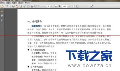 轻松学会wps文档转成加密的PDF文档的小技巧截图